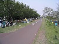 20050430A