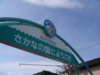 20050502_SAKANA1